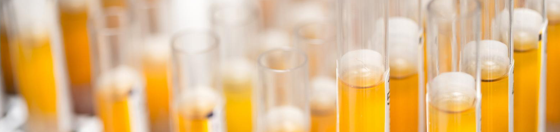 Test Tubes Research Image
